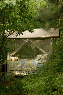 Canopy bed outdoor nestled within foliage of grove of trees